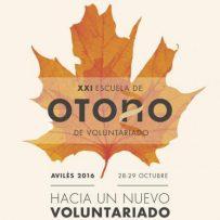 Laborarte participa en la XXI Escuela de Otoño de la Plataforma del Voluntariado de España